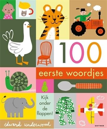 Afbeeldingen van 100 eerste woordjes