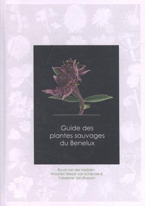 Afbeeldingen van Guide des plantes sauvages du Benelux