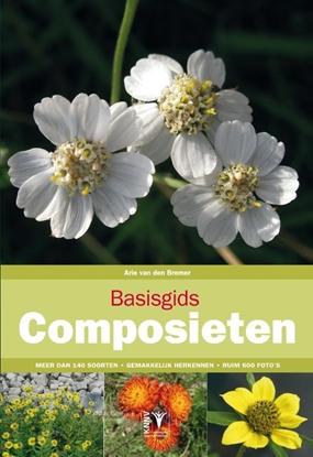 Afbeeldingen van Basisgids Basisgids composieten
