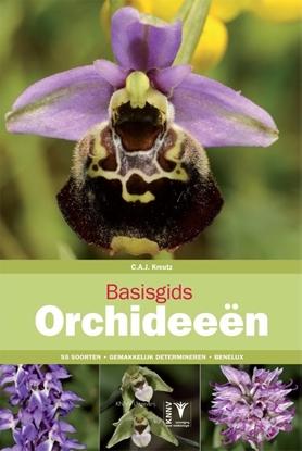 Afbeeldingen van Basisgids Basisgids orchideeën