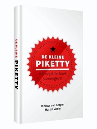Afbeeldingen van Kleine boekjes - grote inzichten De kleine Piketty