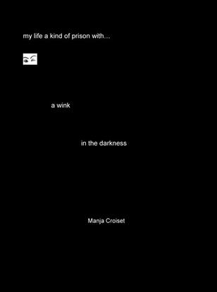 Afbeeldingen van A wink in the darkness