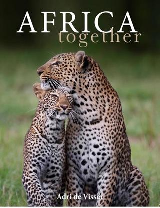 Afbeeldingen van Africa together