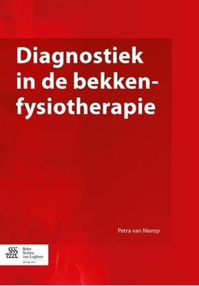 Afbeeldingen van Diagnostiek in de bekkenfysiotherapie