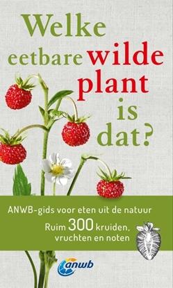 Afbeeldingen van Welke eetbare wilde plant is dat?