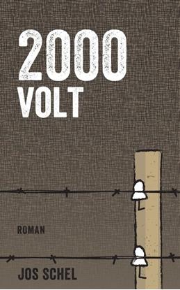 Afbeeldingen van 2000 VOLT